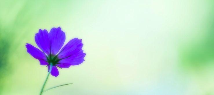 謙虚に生きるための7つの方法